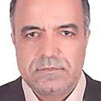 Volunteer Profile: Seyed Mohsen Ahmadinejad